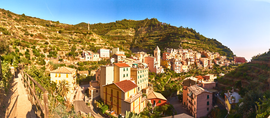View of Manarola from the back of the town