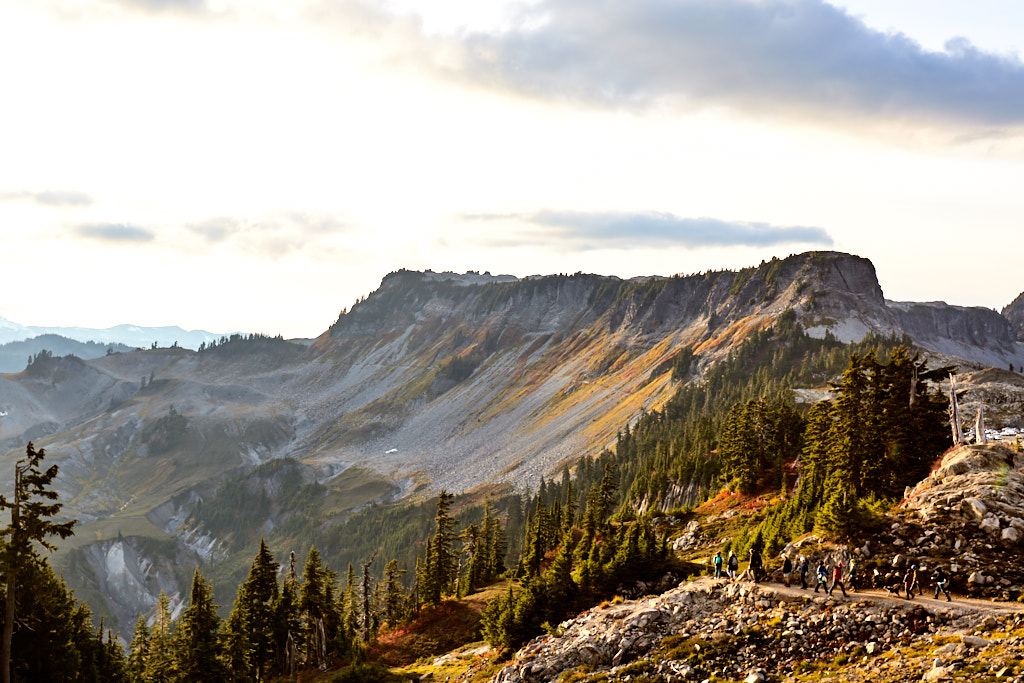 Fall colours on Table Mountain near Artist Point, Mt. Baker, WA.